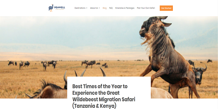 the Great Wildebeest Migration safari package